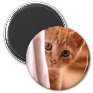 Hide-and-Seek Kitty refrigerator magnet