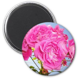 Hiding below the petals magnet