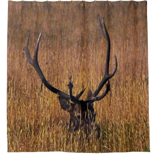 Hiding Elk Shower Curtian Curtain