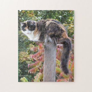 Hiding from rocking chairs jigsaw puzzle