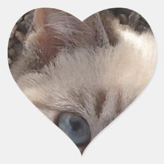 Hiding Heart Sticker