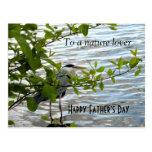 Hiding Heron! Post Cards