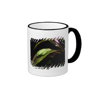 """Hiding in Plain Sight"" fringe border mug"