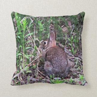 Hiding in Plain Sight Pillows