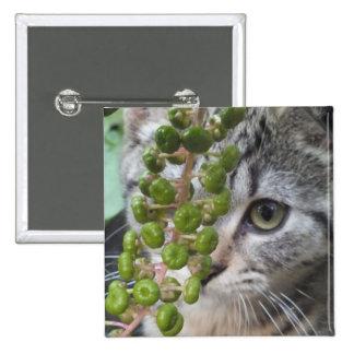 Hiding Kitten Pinback Button
