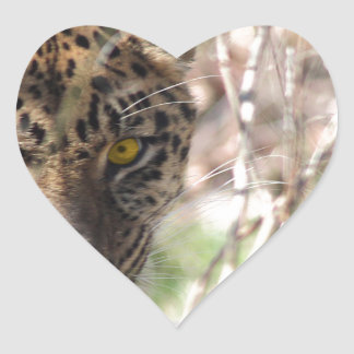Hiding Leopard Heart Sticker