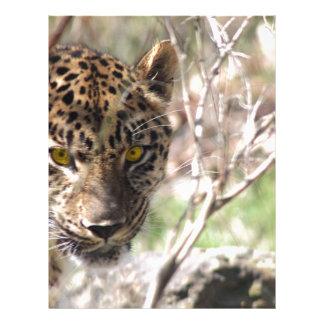 Hiding Leopard Letterhead