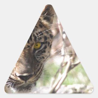 Hiding Leopard Triangle Sticker