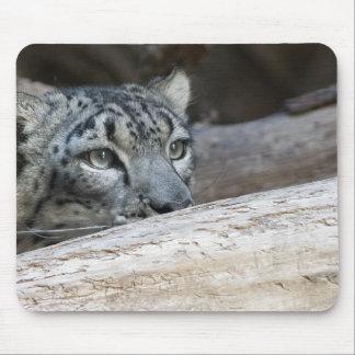 Hiding... Mouse Pad