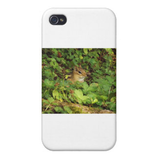 Hiding Place Cases For iPhone 4