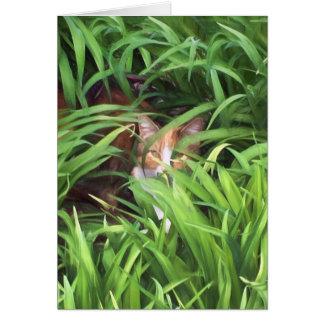 hiding tabby cat in leaves card
