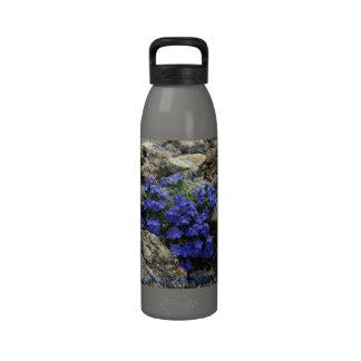 Hidración/botella de agua: AlpineDetermination