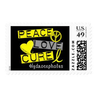 Hidrocefalia de la curación del amor de la paz envio