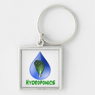 Hidrocultivo, descenso del agua y texto verde de l llavero personalizado