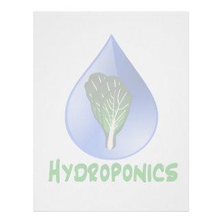 Hidrocultivo, descenso del agua y texto verde de l membrete personalizado