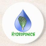 Hidrocultivo, descenso del agua y texto verde de l posavaso para bebida