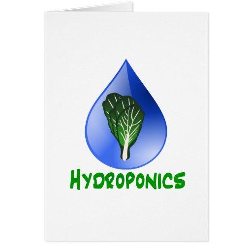 Hidrocultivo, descenso del agua y texto verde de l tarjeta