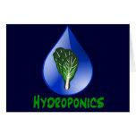Hidrocultivo, descenso del agua y texto verde de l tarjetón