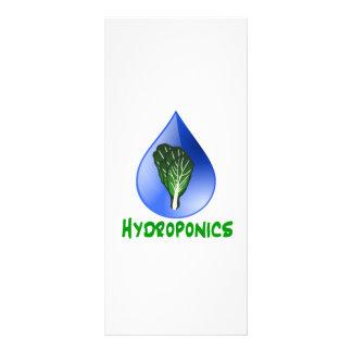 Hidrocultivo, descenso del agua y texto verde de l tarjeta publicitaria