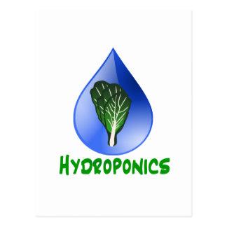 Hidrocultivo, descenso del agua y texto verde de tarjetas postales