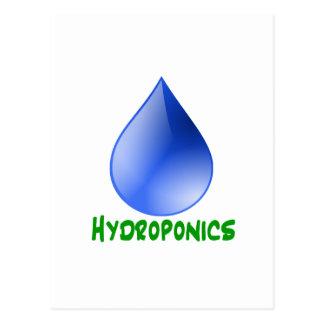 Hidrocultivo en texto verde con descenso del agua postales