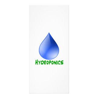 Hidrocultivo en texto verde con descenso del agua  tarjetas publicitarias a todo color