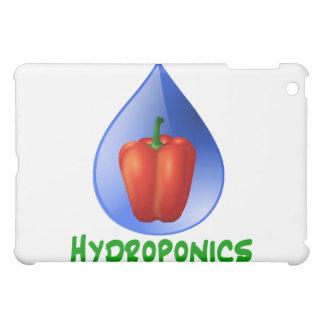 Hidrocultivo paprika Descenso texto verde