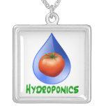Hidrocultivo-Tomate, texto verde, descenso azul Joyería