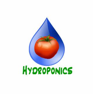 Hidrocultivo-Tomate, texto verde, descenso azul Imán Fotoescultura
