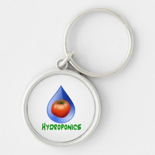 Hidrocultivo-Tomate, texto verde, descenso azul Llavero Personalizado
