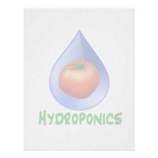 Hidrocultivo-Tomate, texto verde, descenso azul Plantillas De Membrete