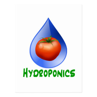 Hidrocultivo-Tomate, texto verde, descenso azul Postal