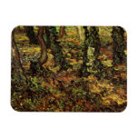 Hiedra de los troncos de árbol de Van Gogh w, impr Imanes Rectangulares