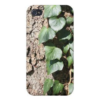 Hiedra en árbol iPhone 4/4S fundas