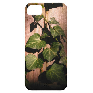 Hiedra iPhone 5 Case-Mate Carcasas