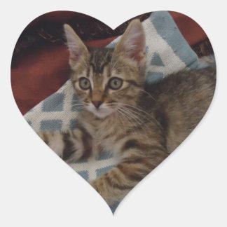 Hiedra - gatito del rescate del Tabby Pegatina En Forma De Corazón