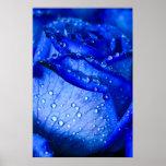 Hielo azul subió impresiones