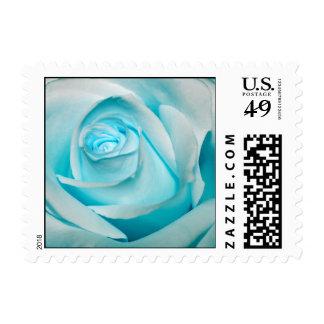 Hielo de la turquesa subió timbre postal