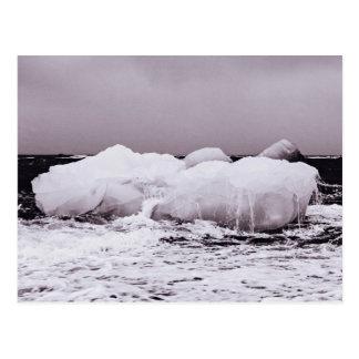 Hielo de mar de coral de fusión blanco y negro postales