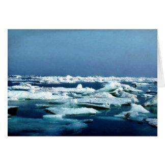 Hielo marino del llano costero del refugio ártico tarjeta de felicitación