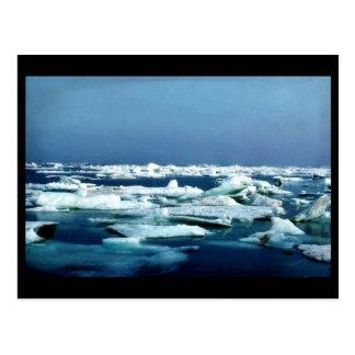 Hielo marino del llano costero del refugio ártico postales