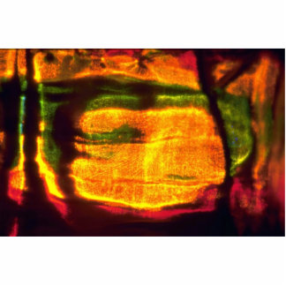 Hielo multicolor escultura fotográfica