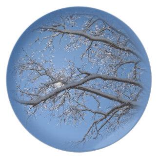 Hielo que brilla y árboles nevados platos