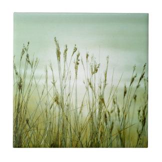 hierba azulejo cuadrado pequeño