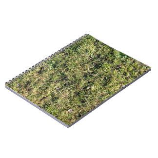 Hierba con el fondo de las hojas libretas espirales