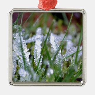 Hierba congelada del invierno adornos de navidad