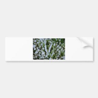 Hierba congelada del invierno pegatina de parachoque