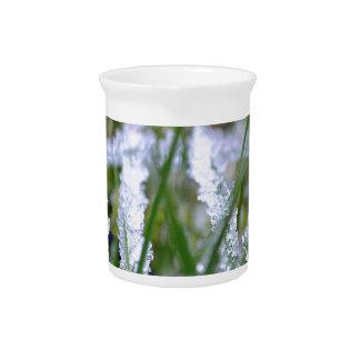 Hierba congelada del invierno jarras para bebida