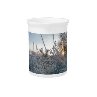 Hierba congelada en el parque de Richmond Jarron