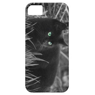 Hierba de gato iPhone 5 funda
